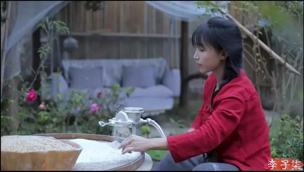 央視評價李子柒影響力:14歲輟學,28歲火出國門,她的成功有必然